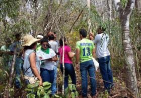 3º ANO DE AGROECOLOGIA do IFG na Chácara Caminho das Águas